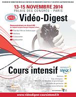 Video_digest