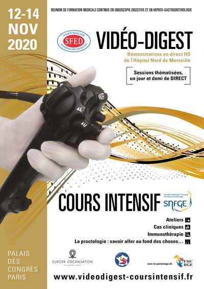 VIDEO DIGAST 2020